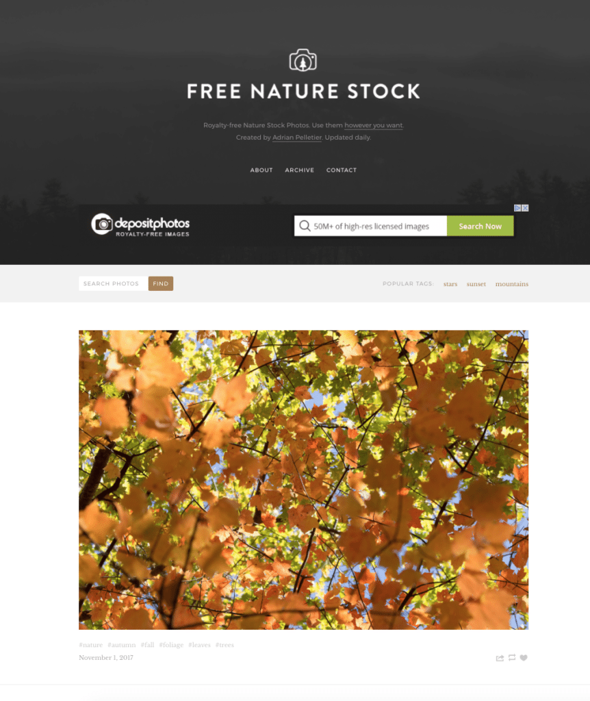 free nature stock free stock photos