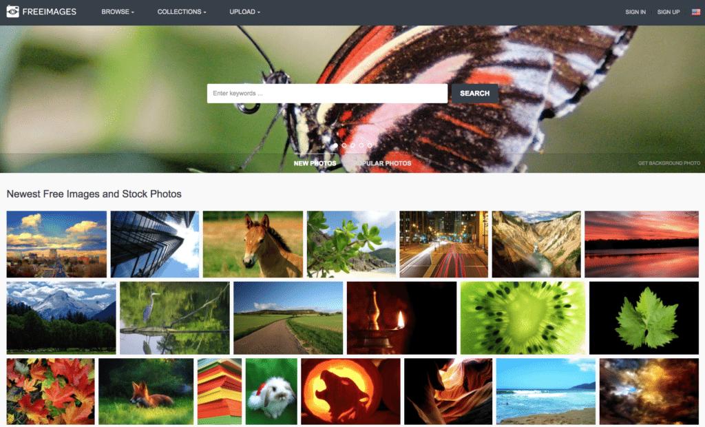 free images free stock photos